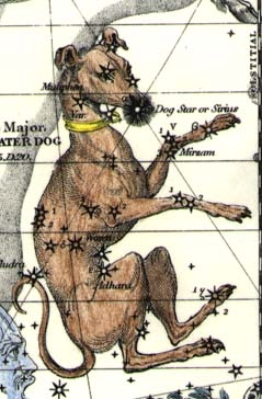 Lelaps, Canis Major